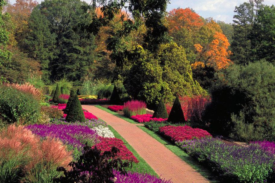 Сад и участок в  цветах:   Красный, Серый, Темно-зеленый, Черный.  Сад и участок в  .