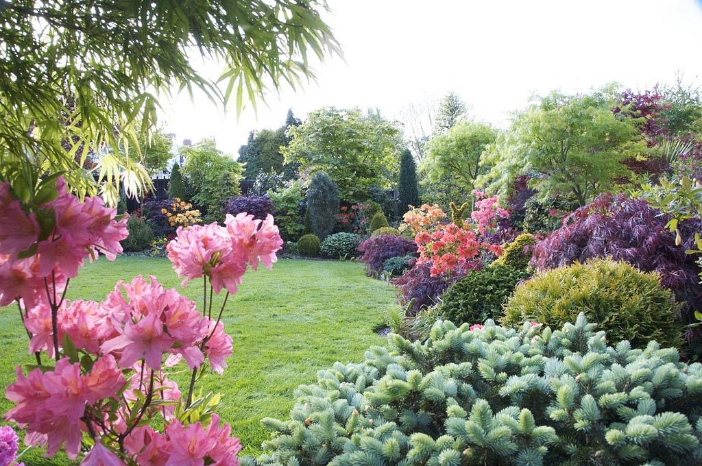 Сад и участок в  цветах:   Белый, Салатовый, Серый, Темно-зеленый.  Сад и участок в  .