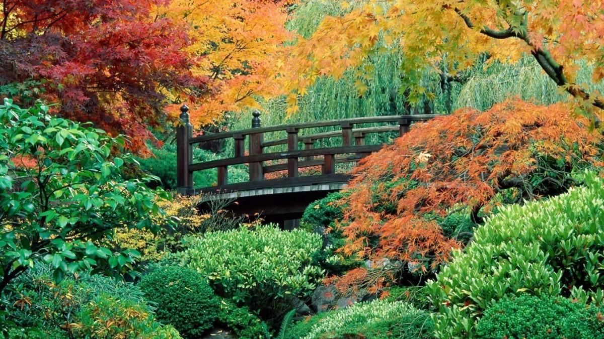 Сад и участок в  цветах:   Бежевый, Серый, Синий, Темно-зеленый.  Сад и участок в  .