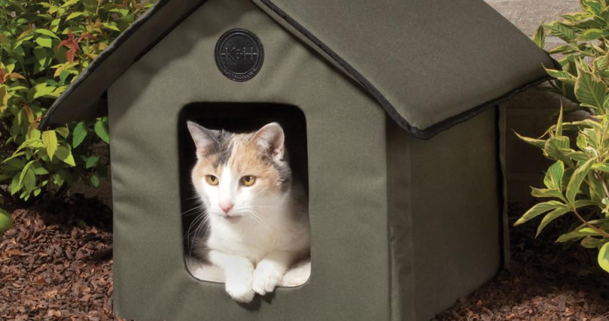 15 самых крутых домиков для кошек