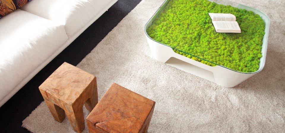 Живой мох в интерьере: 25 идей по использованию и советы по уходу