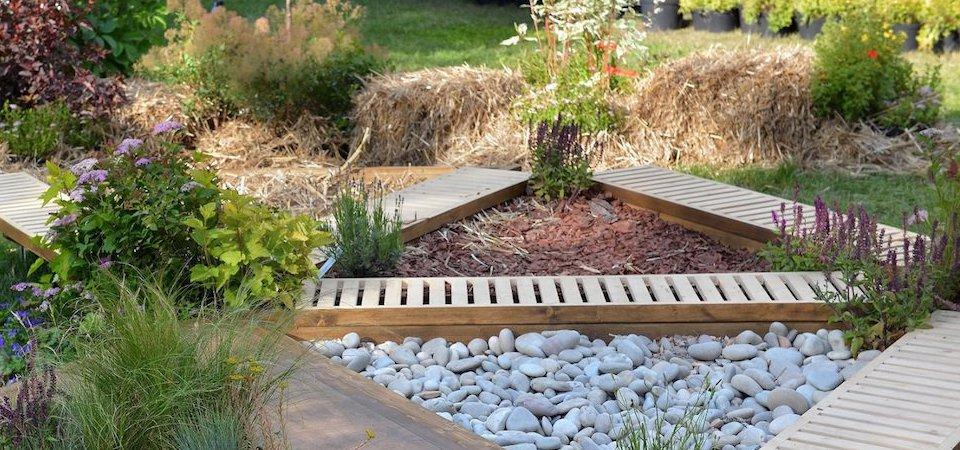 Что такое сенсорный сад и как его устроить: советы из первых рук