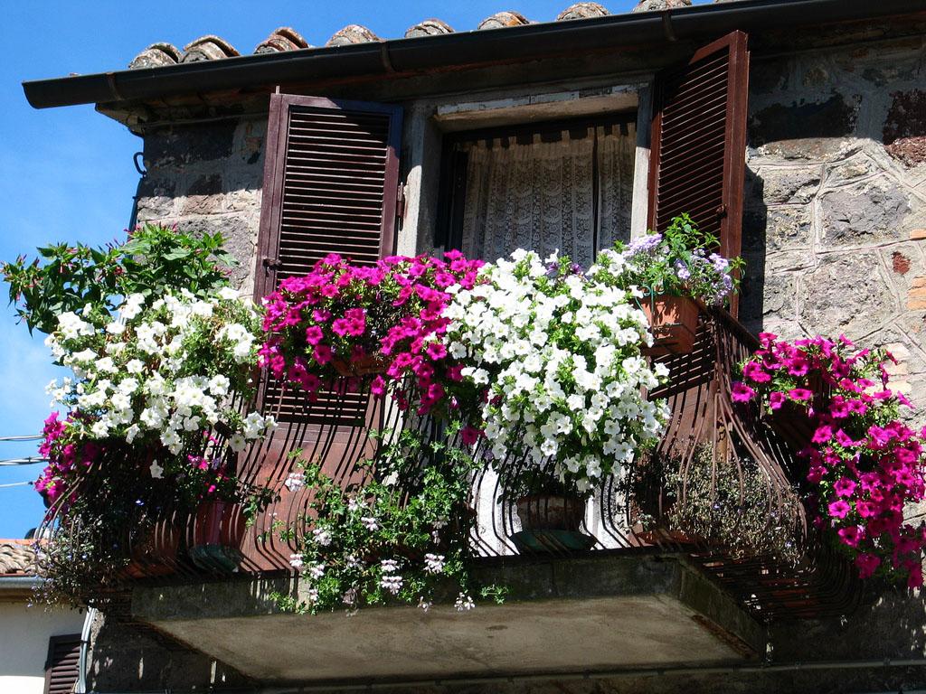 Балкон, веранда, патио в цветах: голубой, черный, серый, светло-серый. Балкон, веранда, патио в стиле классика.