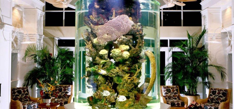 Вспоминая море: лучшие интерьерные решения с участием аквариумов